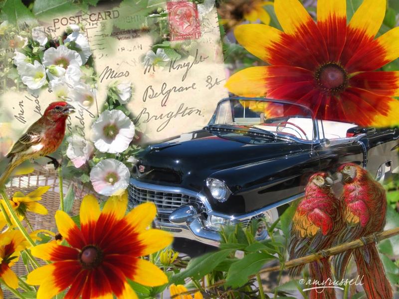 Miss Knight - Photoshop montage & Corel Painter