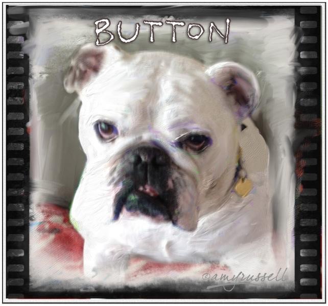 Button - Photoshop montage & Corel Painter